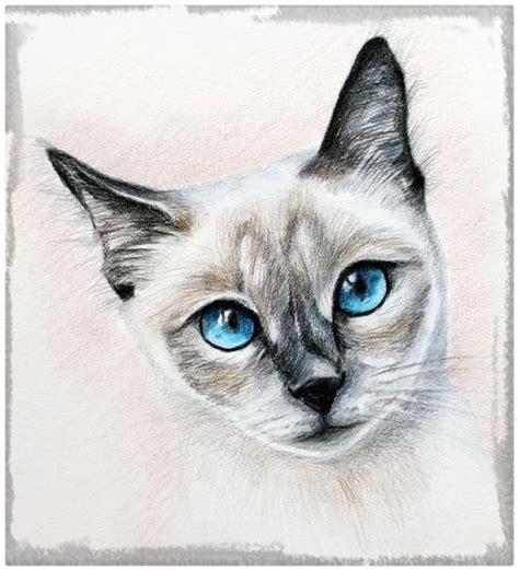 Dibujos Para Colorear Dibujos De Gatos | Holidays OO