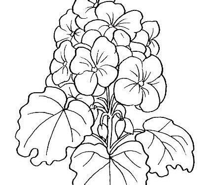 Dibujos para pintar en tela flores | Margaritas | Dibujos ...
