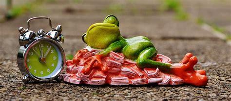 Dietas y salud » Archivo del Blog » Remedios naturales ...