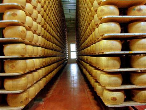 Diferentes tipos de quesos - CocinaTipo