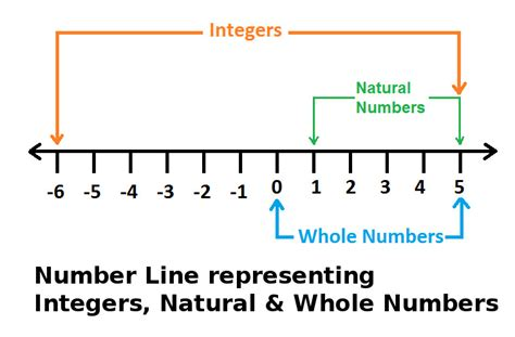 Difference between Integers, Whole & Natural Numbers at ...