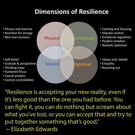 Dimensions of Resilience: Based off of Native Medicine ...