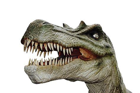 Dinosaur Dino Giant Lizard · Free photo on Pixabay