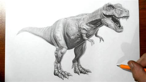 Dinosaur Drawings In Pencil How To Draw A T Rex Dinosaur ...