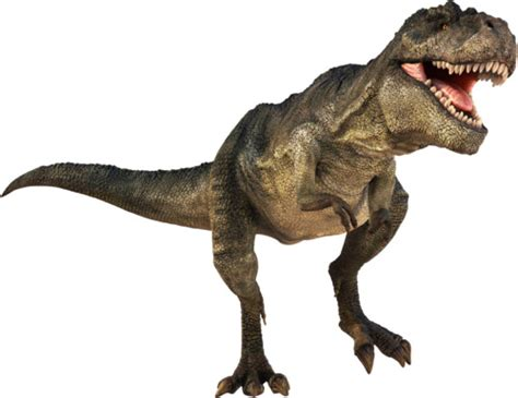 Dinosaur Facts: 29 Facts about Dinosaurs ←FACTSlides→