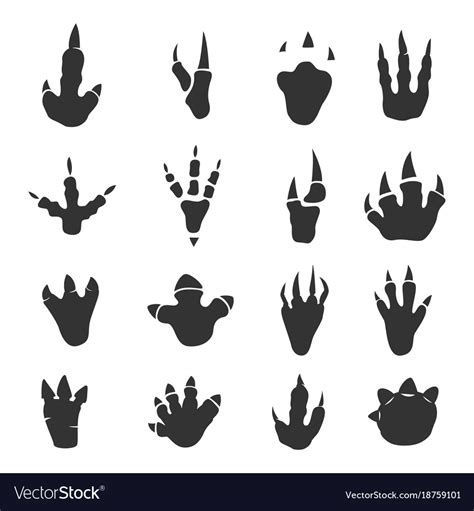 Dinosaur footprints collection on white Royalty Free Vector