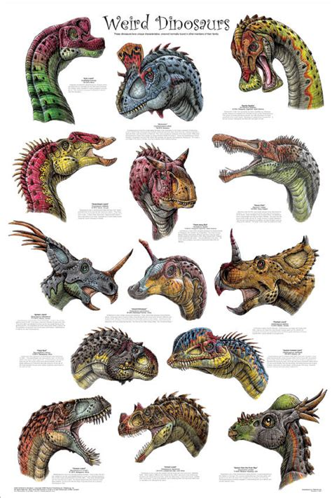 Dinosaur Types A Z | DinosaurValley@Share on dinosaurs ...