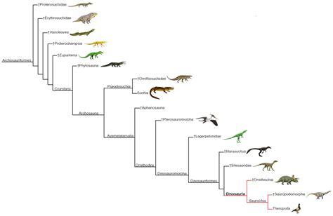 Dinosauria   Wikipedia