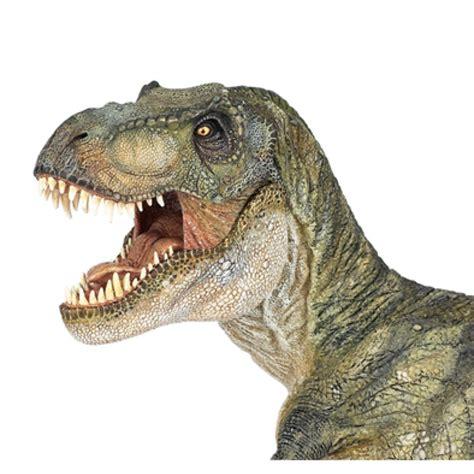 dinosaurio para jugar Tyrannosaurus  Juguetes de Madera