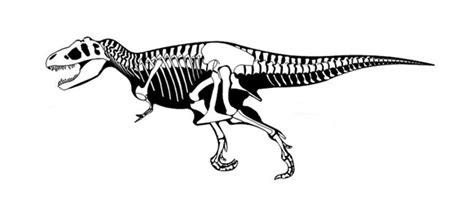 Dinosaurio rex para colorear