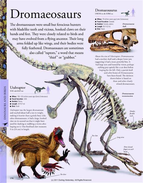Dinosauriomanía, lo que querías saber de los dinosaurios ...
