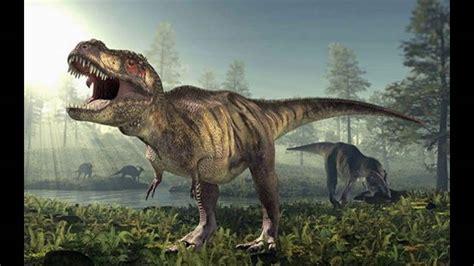 Dinosaurios extincion| dinosaurios para niños|dinosaurios ...