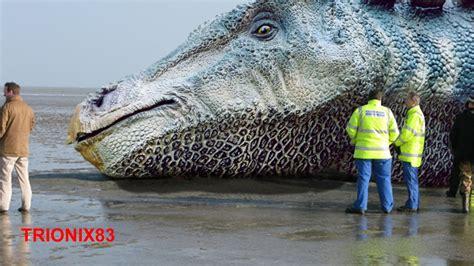 DINOSAURIOS REALES: Huesos de dinosaurios reales – Fosiles ...
