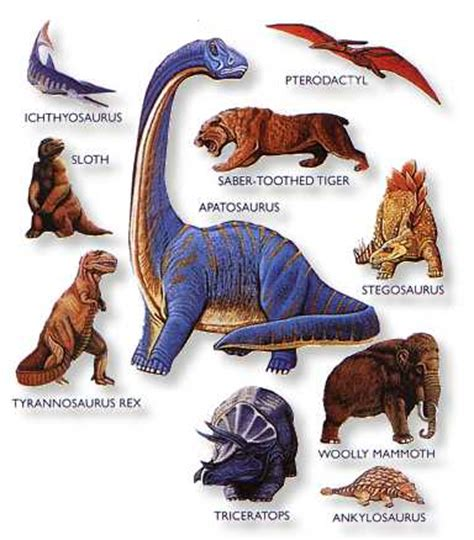 Dinosaurs pictures and names |Funny Animal
