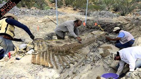 Dinozorlar Klonlanabilir Mi Jurassic Park Gerçek Olabilir ...