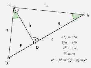 discalculia e scuola: tutte le formule sul triangolo ...