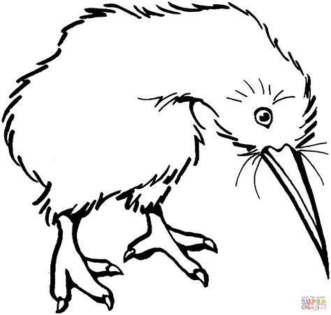 Disegno di Kiwi da colorare | Disegni da colorare e ...