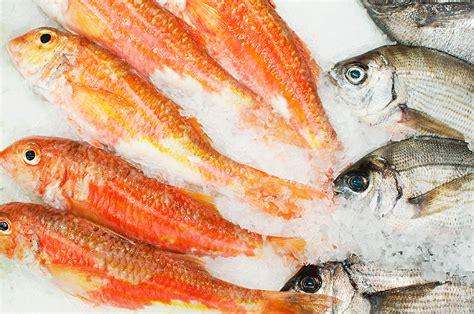 Distribución y logística: Pescado y marisco. GADISA