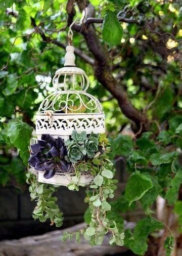 Diversidad de plantas para jardineras exteriores   Como ...