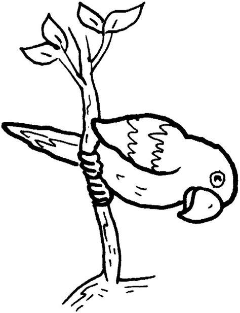 Divertidos dibujos de aves para colorear para niños y ...