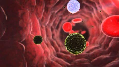 DOCTORS SAÚDE   Nanotecnologia en la Medicina   YouTube