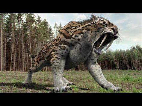 Documental   Dinosaurios en el Mar | FunnyDog.TV