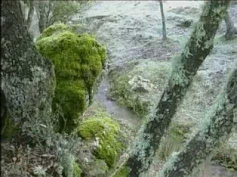 Documental sobre el Parque Natural Sierra de Huétor - YouTube