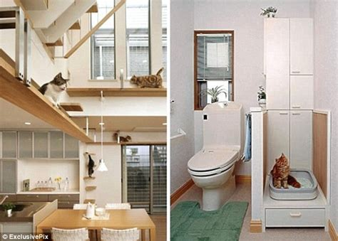 Does it come fully fur-nished? Dream home designed ...