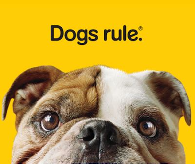Dogs and Dog rules on Pinterest