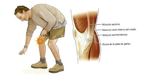 Dolor anterior de rodilla - Clínica Traumatológica Doctor ...