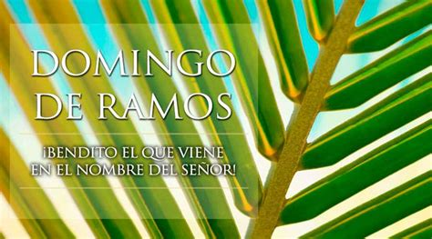 Domingo de Ramos - ACI Prensa