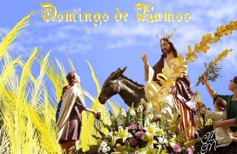 Domingo de Ramos, Ciclo B – Brisa Andina