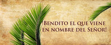 Domingo de Ramos   Diócesis de Mexicali, Baja California.