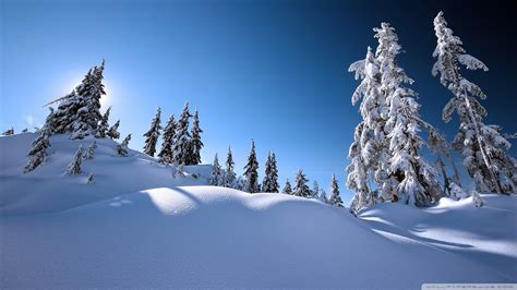Download Beautiful Winter Scenery 2 Wallpaper 1920x1080 ...