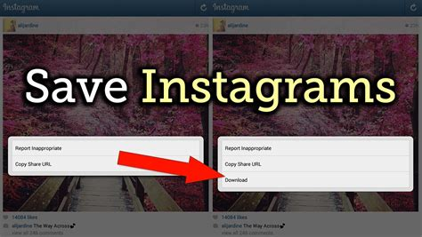 Download & Save Any Instagram Photo or Video You Want ...