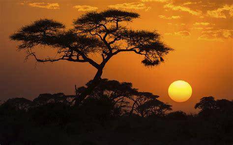 Dr. Dan Steinbock Blog | Post Brexit Africa | Talkmarkets