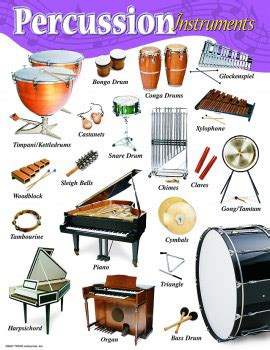 DRUM BUM: POSTERS: POSTERS: Percussion Instruments Poster