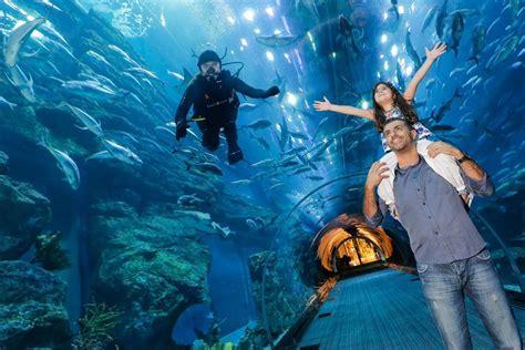 Dubai Aquarium & Underwater Zoo: 1 Day Ticket