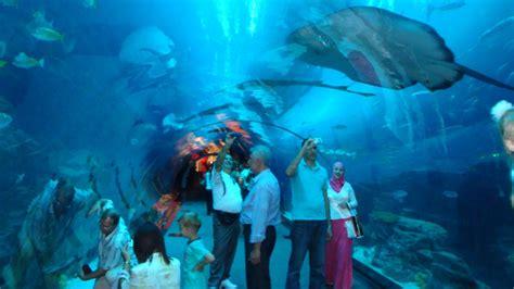 Dubai Aquarium & Underwater ZOO   JOuTrip