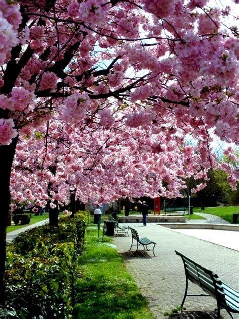 É primavera na Europa!