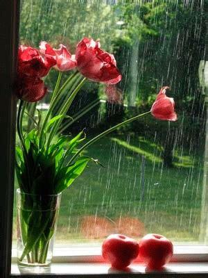 Efecto lluvia con movimiento