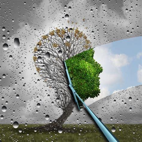 Efectos mediambientales: lluvia ácida, efecto invernadero ...
