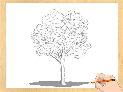 Einen Baum zeichnen – wikiHow