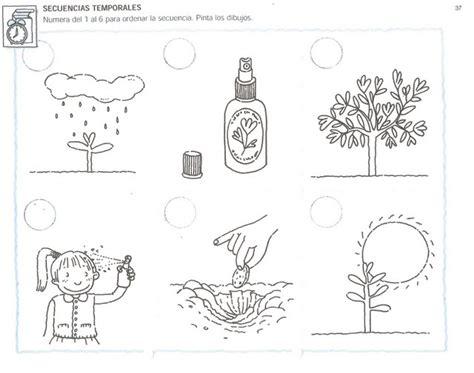 ejercicio para niños de secuencias temporales | PLANTES ...