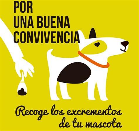 El Ayuntamiento recuerda a los propietarios de mascotas ...