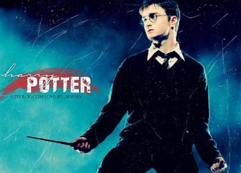 El Blog de Harry Potter: Argumento del libro