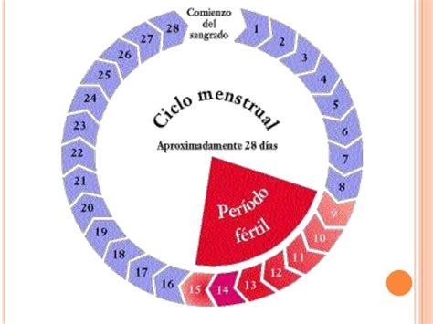 El ciclo menstrual femenino