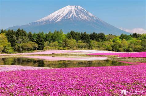 El color de la naturaleza en 20 imágenes espectaculares ...