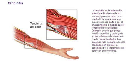 El cuerpo humano. Sistema muscular. Introducción a las ...