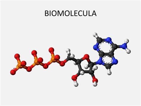EL FARO NANOTECNOLOGICO: NANODIC: Biomolécula
